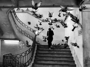 Mostra Henri Cartier Bresson