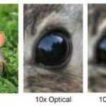 digital zoom vs optical zoom