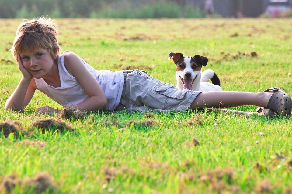 Fotografare bambini e animali domestici nel matrimonio